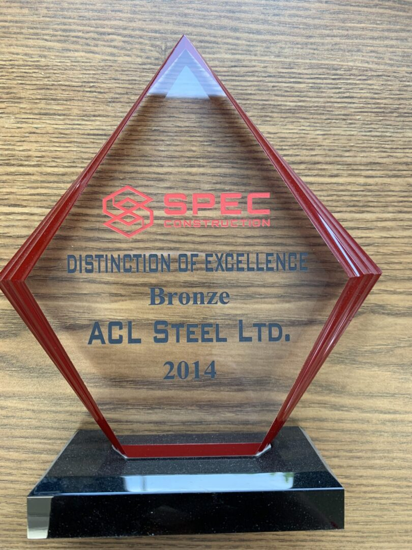 distinction of excellence bronze trophy